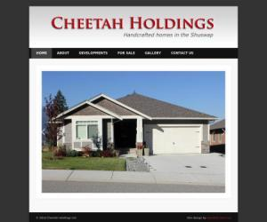 cheetah-holdings